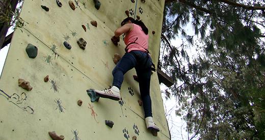 Muro escalada
